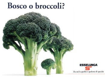 bosco-o-broccoli