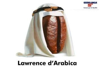 lawrence-darabica