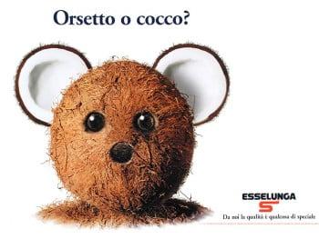 orsetto-o-cocco