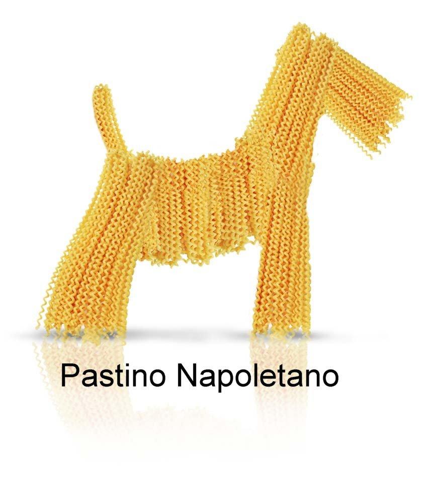 pastino_napoletano