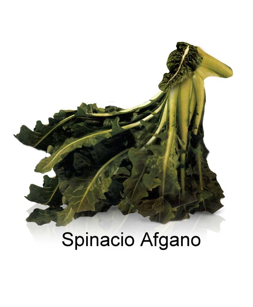 spinacio_afgano
