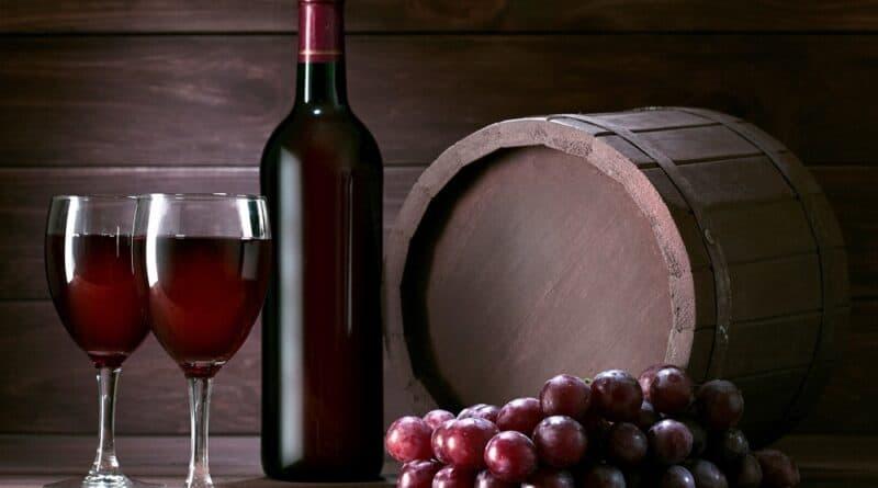 I vini di Puglia